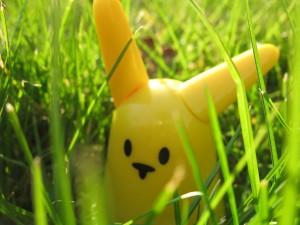 Nabaztag jaune dans l'herbe